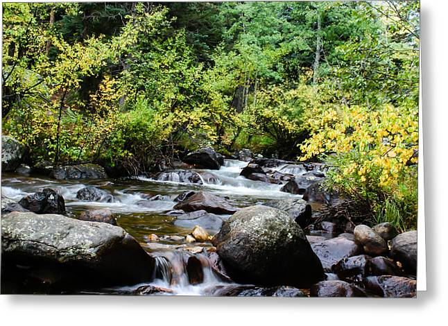 Greeting Card featuring the photograph Rocky Mountain Stream by Jay Stockhaus