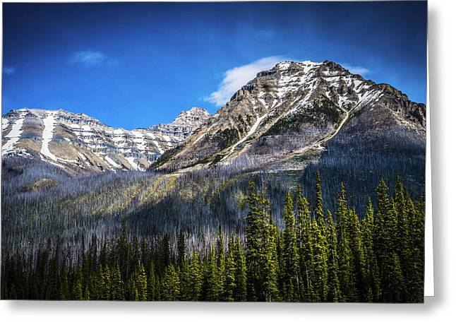 Greeting Card featuring the photograph Rocky Mountains Kootenay National Park by Rob Tullis
