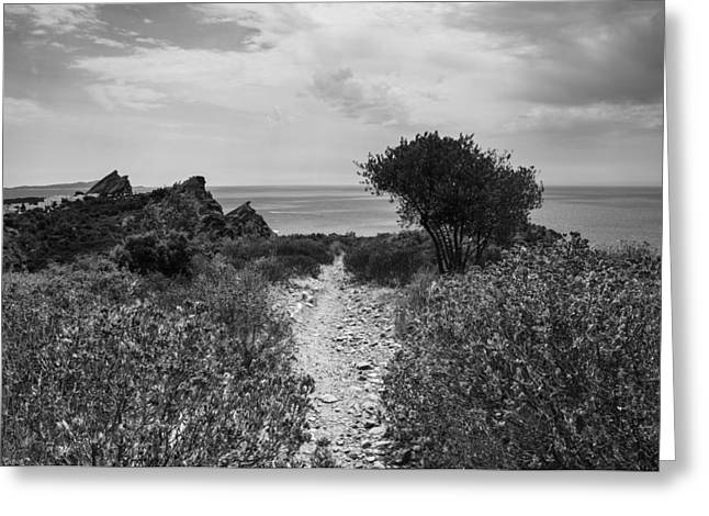 Rocky Path To The Sea In Mono Greeting Card by Georgia Fowler