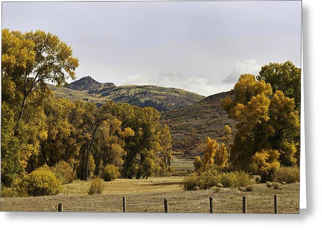 Rocky Peak At Lower Elk River Greeting Card by Daniel Hebard