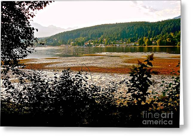 Rocky Point Port Moody Greeting Card by Sher Nasser