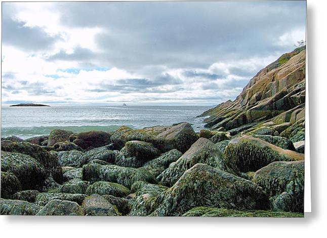 Greeting Card featuring the photograph Rocky Sand Beach by Gene Cyr