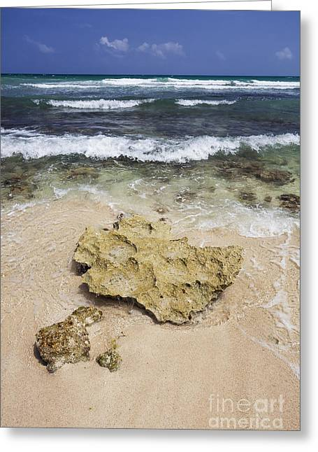 Rocky Shoreline In Tulum Greeting Card