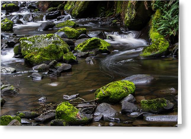 Rocky Stream 03 Greeting Card by Heather Provan