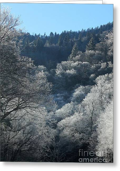 Rocky Top Winter Greeting Card