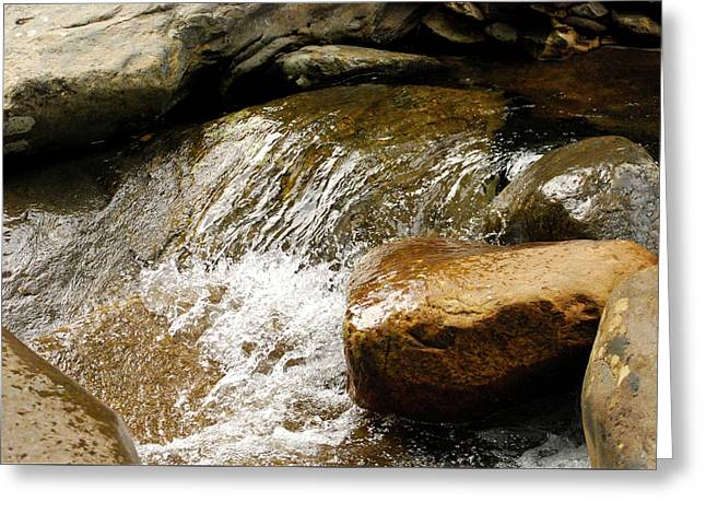 Rocky Waters Greeting Card by Christi Kraft