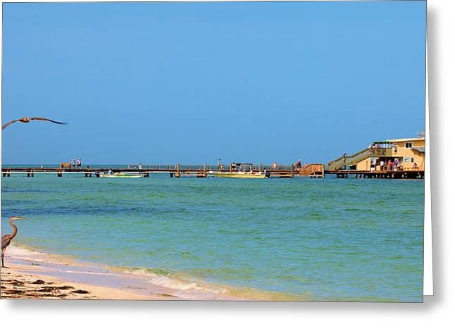 Rod And Reel Pier Greeting Card