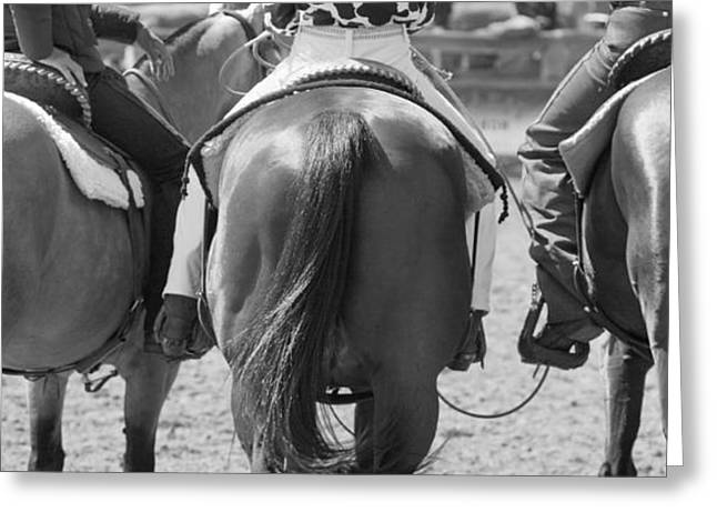 Rodeo Bums Greeting Card by Michelle Wrighton