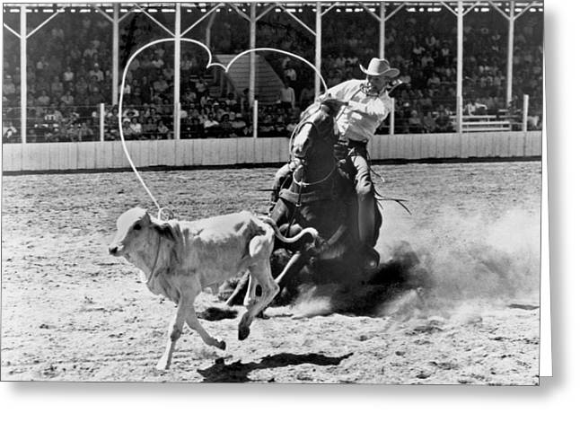 Rodeo Calf Roping Greeting Card by Underwood Archives