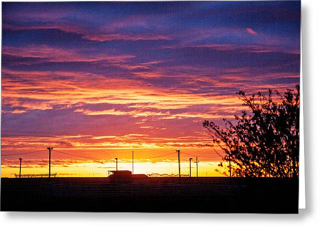 Greeting Card featuring the photograph Rodeo In Sunset by Shirley Heier