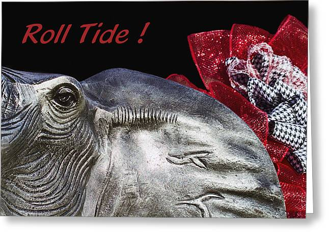 Roll Tide - 14 Time National Champions Greeting Card by Kathy Clark