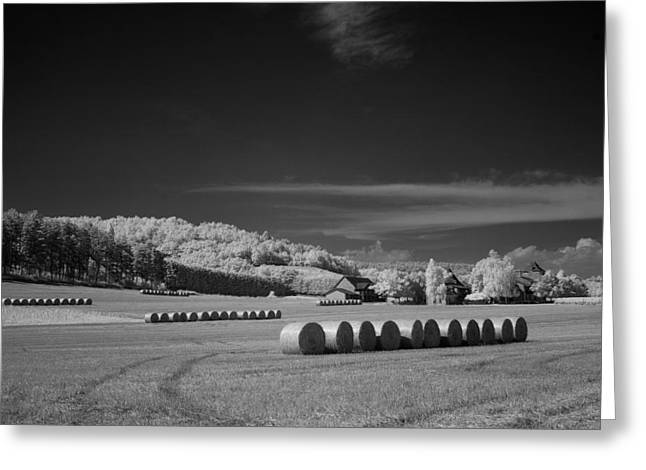 Rolled And Ready To Stack Greeting Card by Jurgen Lorenzen