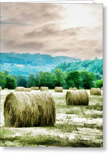 Rolled Bales Greeting Card by Mick Anderson