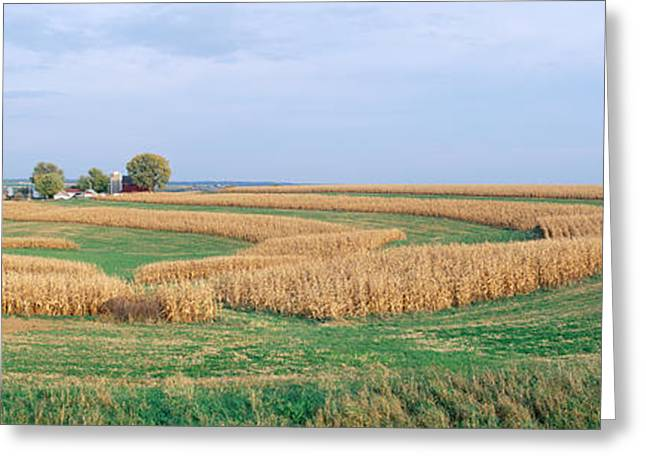 Rolling Farm Fields, North Of Dubuque Greeting Card by Panoramic Images