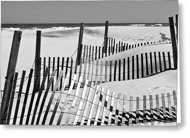 Rolling Fence Greeting Card by Denis Lemay