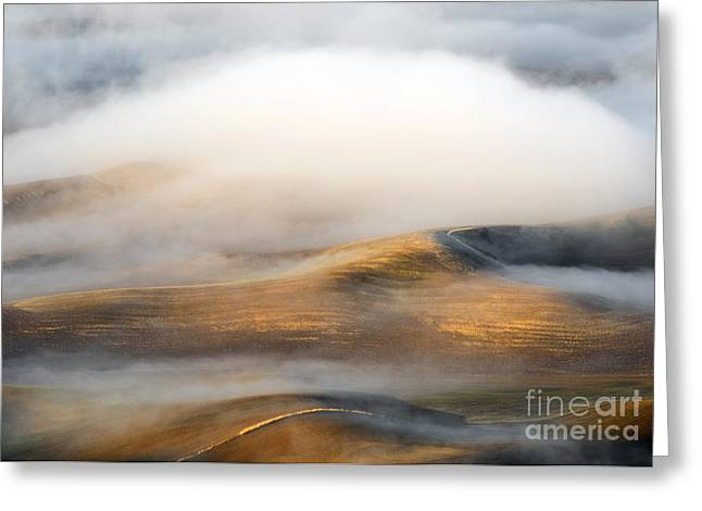 Rolling Gold Greeting Card by Mike  Dawson