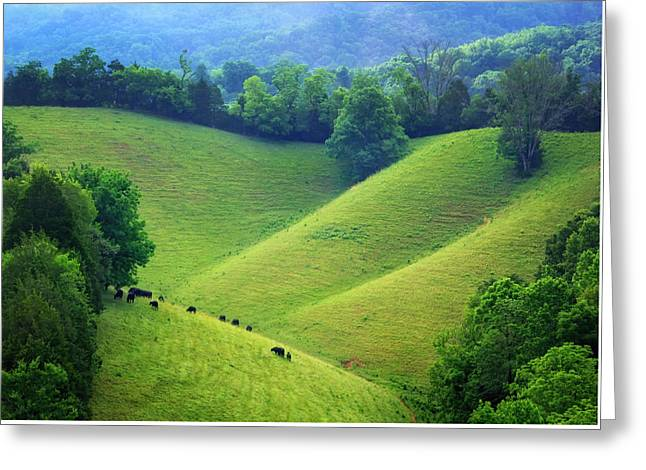Rolling Hills Of Tennessee Greeting Card