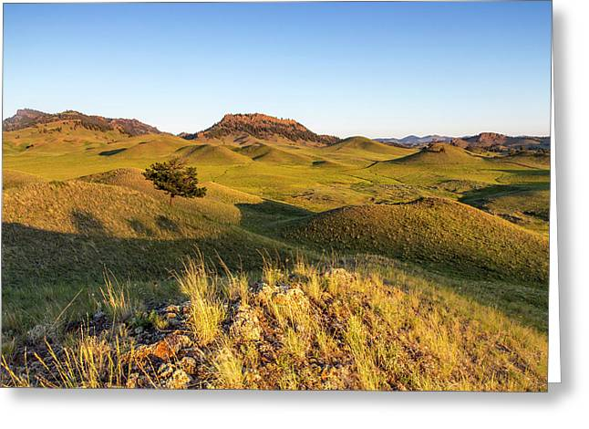 Rolling Hills Of The Bears Paw Greeting Card
