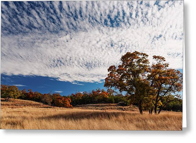 Rolling Hills Of The Texas Hill Country In The Fall - Fredericksburg Texas Greeting Card
