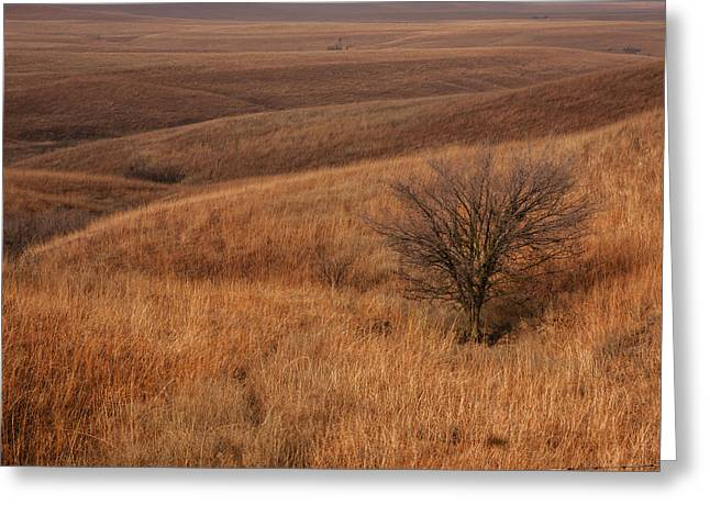 Greeting Card featuring the photograph Rolling Hills by Scott Bean