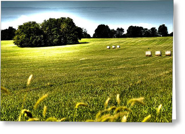 Rolling Pastures Greeting Card