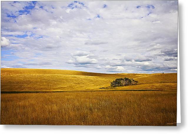 Rolling Prairie Greeting Card