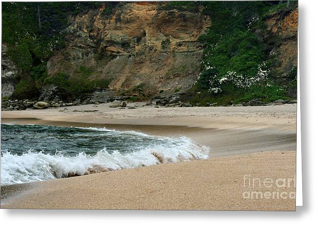 Rolling Waves Greeting Card by Deena Otterstetter