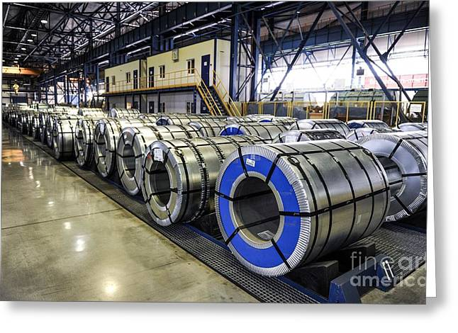Rolls Of Steel Sheet At A Factory Greeting Card by Ria Novosti