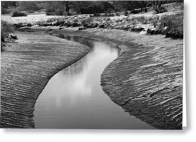 Greeting Card featuring the digital art Roman River Bend by David Davies
