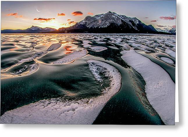 Romance On Ice Greeting Card by Charles Lai