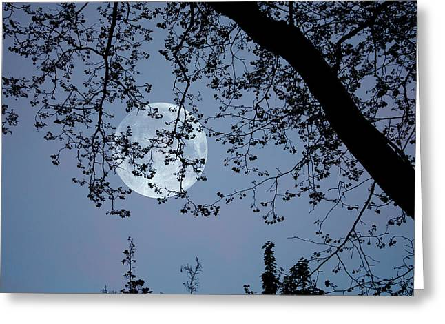 Greeting Card featuring the photograph Romantic Moon  by Angel Jesus De la Fuente