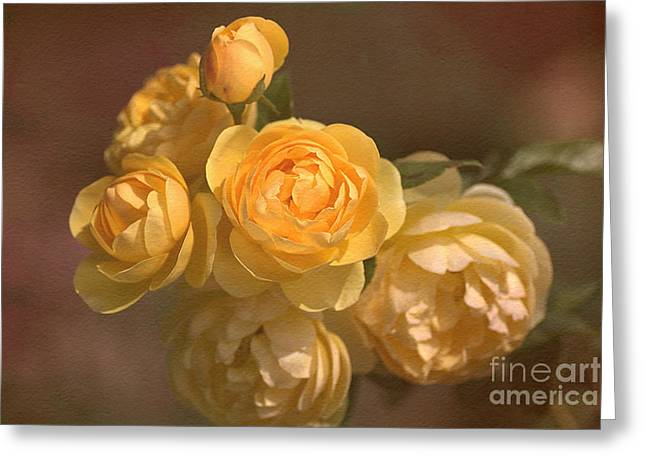 Romantic Roses Greeting Card by Joy Watson