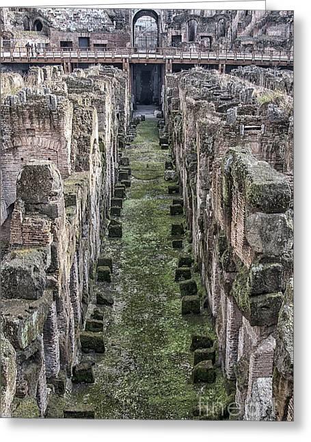 Rome Colosseum Interior 02 Greeting Card
