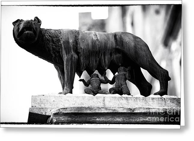 Romulus And Remus Greeting Card by John Rizzuto