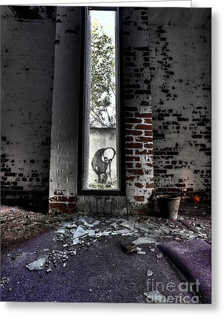 Room With A View Greeting Card by Roddy Atkinson