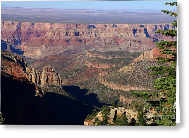 Roosevelt Point Scenic View Greeting Card by Christiane Schulze Art And Photography
