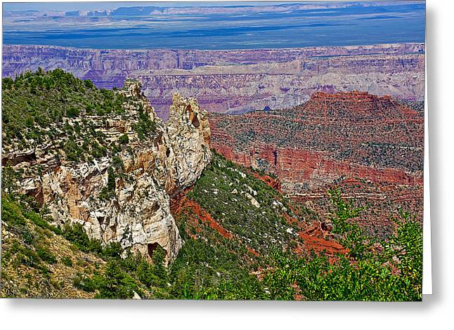 Roosevelt Point Two On North Rim/grand Canyon National Park-arizona   Greeting Card