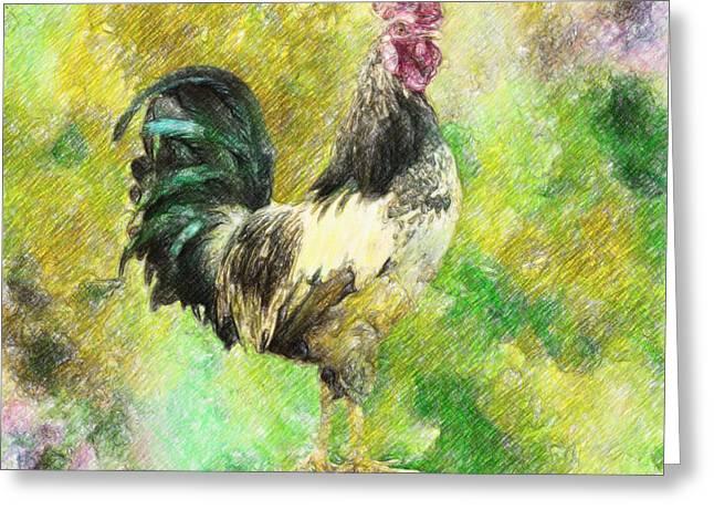 Rooster Greeting Card by Taylan Apukovska