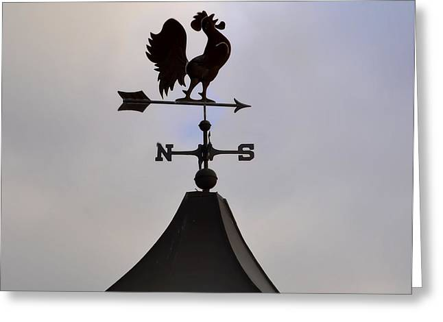 Rooster Weather Vane Greeting Card by Bill Cannon