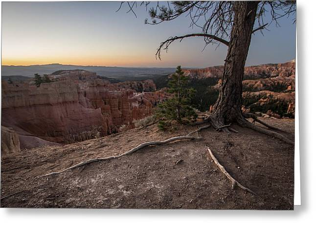 Roots On The Rim 1 Greeting Card