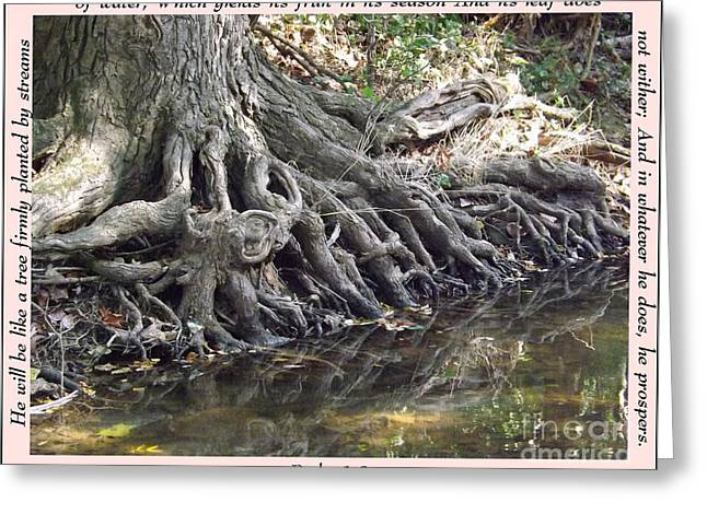 Roots With Verse Psalm 1 3 Greeting Card by Sara  Raber