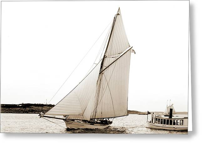 Rosalind, Yachts Greeting Card by Litz Collection