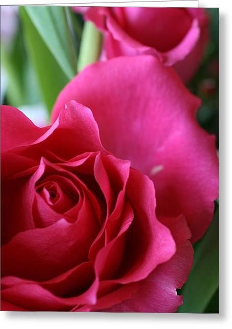 Rose 10 Greeting Card
