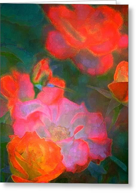 Rose 187 Greeting Card by Pamela Cooper