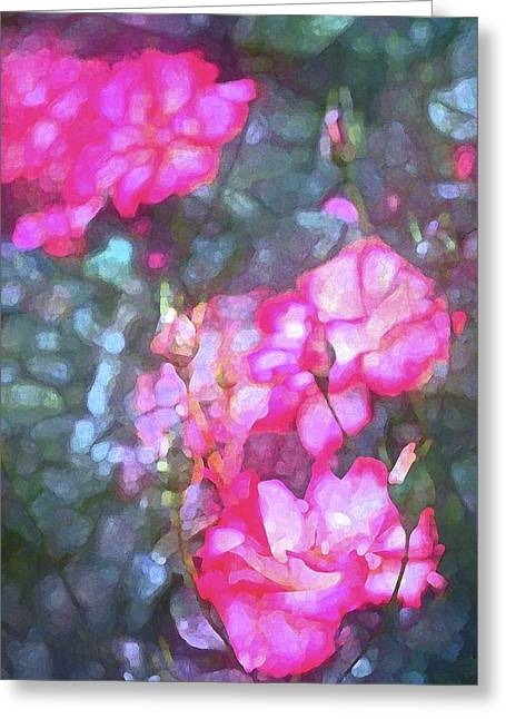 Rose 188 Greeting Card by Pamela Cooper