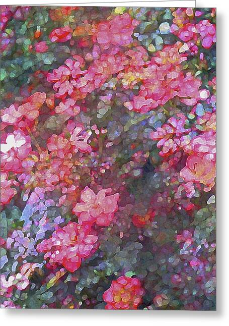Rose 199 Greeting Card by Pamela Cooper