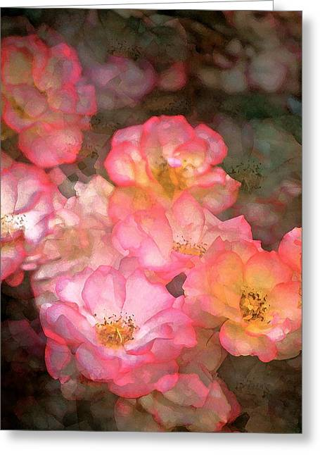Rose 212 Greeting Card by Pamela Cooper