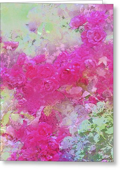 Rose 247 Greeting Card by Pamela Cooper