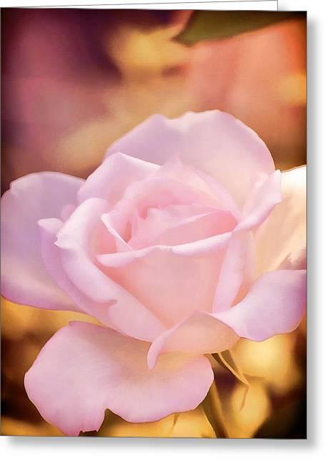 Rose 252 Greeting Card