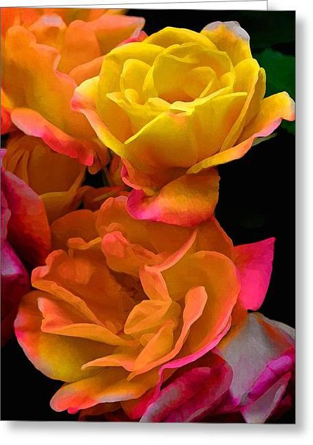Rose 276 Greeting Card by Pamela Cooper